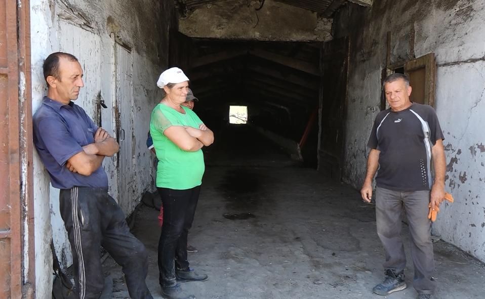 VIDEO | Angajații unei ferme din Bălți nu și-au ridicat salariile de aproape jumătate de an